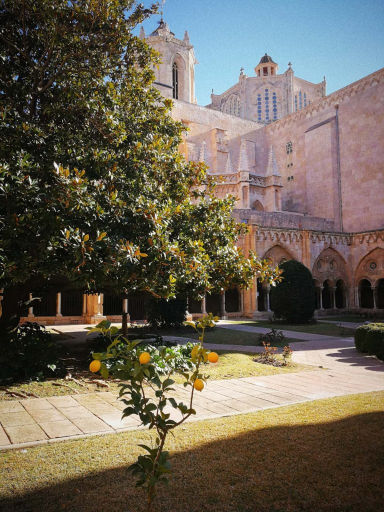 tarragona cathedral yard