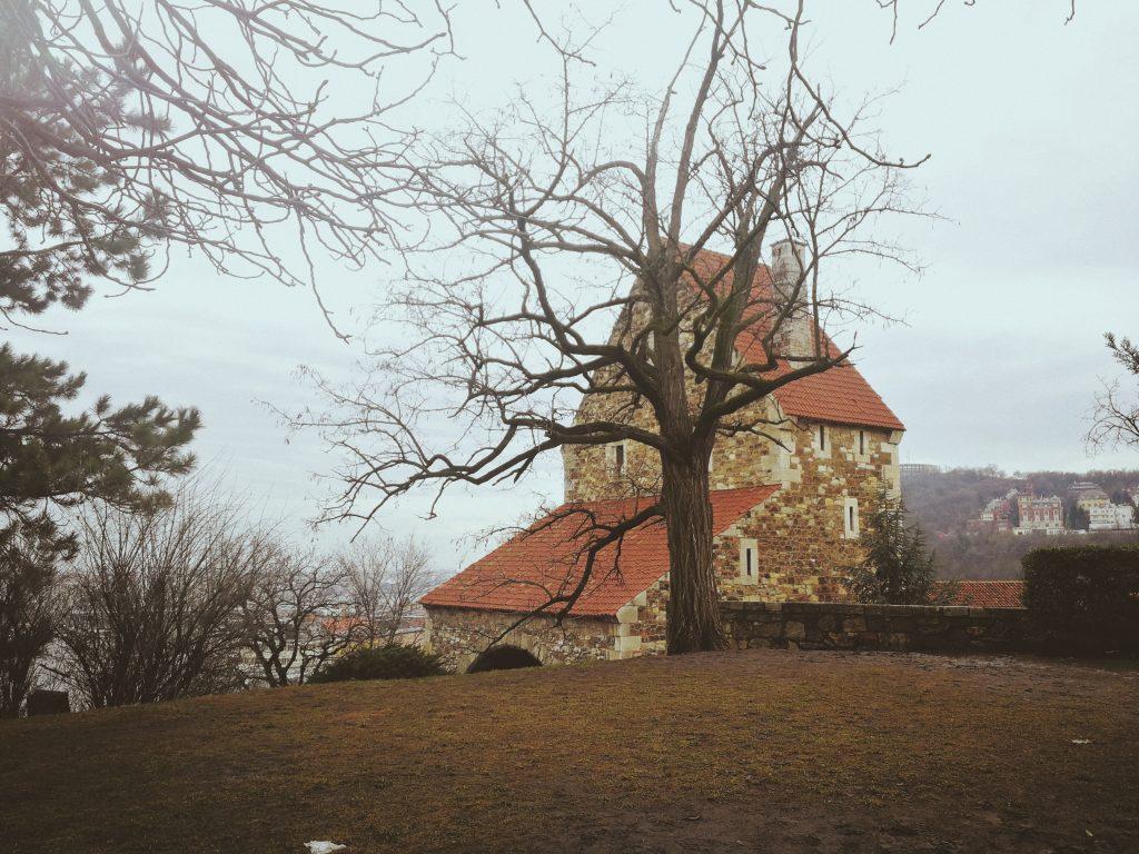 Buda castle park